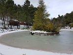 Lago helado en las cercanías de la casa