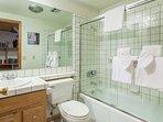 Downstairs Bathroom-Shower /Bathtub