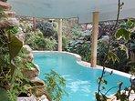 La piscine   sans chlore 33°actuellement dans la serre tropicale de jour.