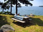 Our picnic table on the shore