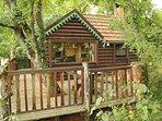 la cabane avec l'arbre traversant sa terrasse
