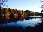 A stunning walk from the garden gate to Tarn Hows, across beautiful countryside.
