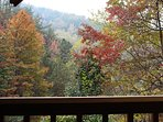 Fall View from porch