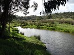 The river in spring