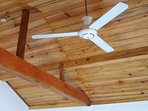 Ceiling fan and AC available.