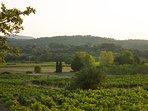 Countryside near Maison Lambot