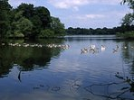 The Lakes of North Shropshire have nine meres to explore.