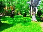 Great Garden !