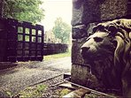 Pensive life size lions welcome guests as they enter through the Gothic iron gates.