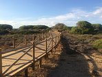 Beautiful walkways through the national reserve protected dunes to the beach.