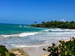 1 BR/ Private Tropical Setting/ Walk to beach!
