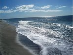 Nothing compares to the beaches at Naples. Clam Pass  is near  with a fantastic boardwalk.