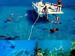 Take the family snorkeling or diving in some of the most beautiful water and reefs in the world.