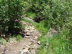 Trail from Cabin to the Feather River