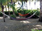 Lots AND lots of hammocks! Tons of shade too! Nice beach breezes as well...