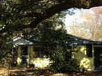 Front entrance shaded by an ancient Live Oak
