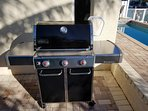New Weber Genesis Gas Grill.