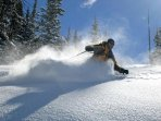 Powder Day! - Picture taken by Seasons 1841 owner of his friend last year on a great powder day at Keystone.