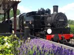 Steam Locomotive in Bodiam Station. 20minutes walk from Cottages.