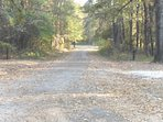 PAVED roads, BEAUTIFUL SCENERY, SAFE quite FRIENDLY NEIGHBORHOOD. ATV riding trails nearby.