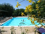 The large pool (14x7 m) surrounded by natural beauty  delights guests
