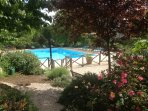 The large pool area has open spaces for sunbathing but also areas shaded by two mature walnut trees