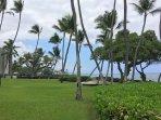 Grounds at Kona Isle.