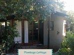 Plumbago Cottage