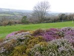 Lovely view over the Moor and garden (winter)