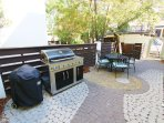 Courtyard with Both Gas and Charcoal Grill
