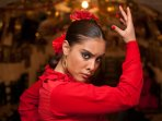 Granada is the home of Flamenco - come and visit us in 2017!