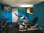 GYM with Elliptical, Recumbent Bike, Treadmill and Dumbbells