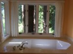 master bathroom tub looking out over redwood grove