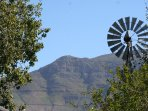 Our windmill with Elephants Eye Mountain in the background