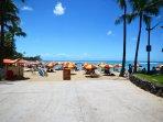 Umbrella, Beach, Coast, Outdoors, Sea
