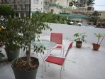 Tree, Chair, Furniture, Pot, Pottery