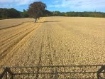 Combining on the farm