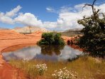Snow Canyon - 10 Minute Drive