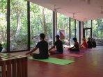 yoga at the Tao wellness center