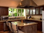 Beautiful kitchen with window opening to secluded tropical backyard.