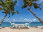 Beachfront hammocks