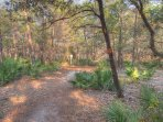 Wonderful Walkways! - Cassiene Gardens has the best walkways to take a hike in the morning before your day starts at...