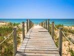 Explore the Algarve's many beautiful beaches