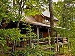 Black Bear Cabin #1