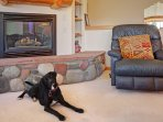 Bring your best friend! - Home allows one dog with additional dog deposit.