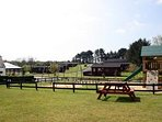 Onsite Park and play area with picnic tables
