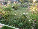 Yard, Lawn, and Garden