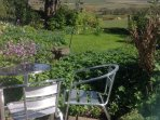 The cottage garden is a lovely place for lunch.