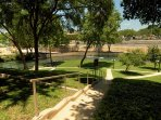 Comal River 317-Common Grounds