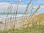 Beach view through sea oats from beach access